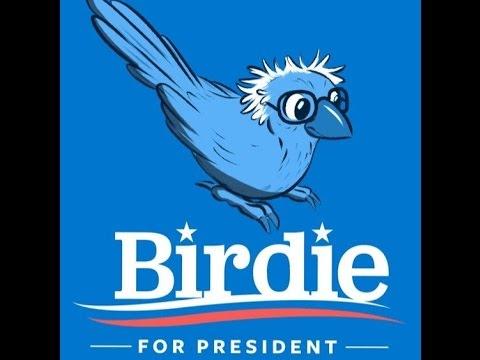birdie-president